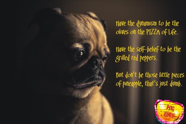 Pug Guru Sayings #2